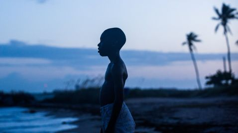 "Internationally Acclaimed Oscar Nominee ""Moonlight"" Premieres in India with JIO MAMI FILM CLUB WITH STAR in ASSOCIATION WITH Vkaao and PVR PICTURES"